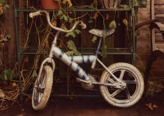 The fastest Bike in Town. The Flowery Room