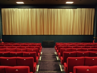 Cinema. The Flowery Room